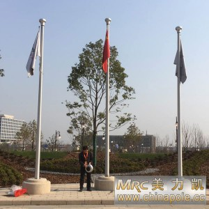 Shanghai-Disneyland-flagpole